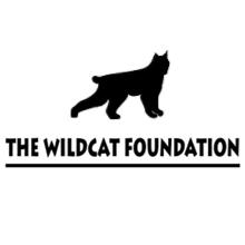The Wildcat Foundation