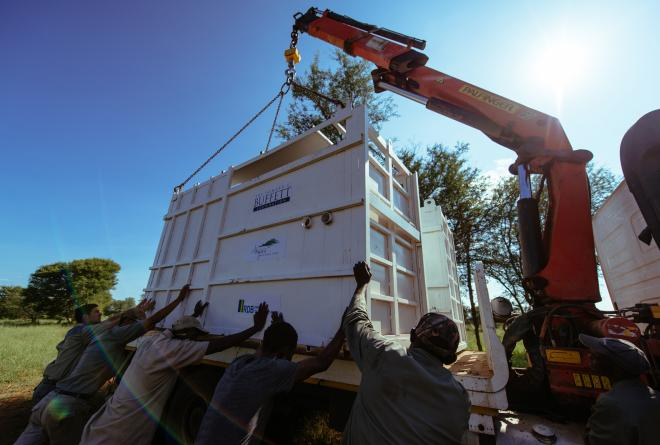 A crate is loaded onto a truck to transfer the rhinos to holding bomas.
