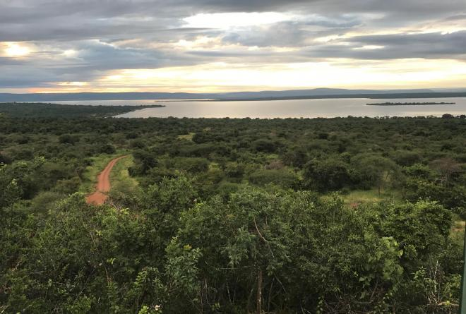 Scenic view of Akagera National Park.