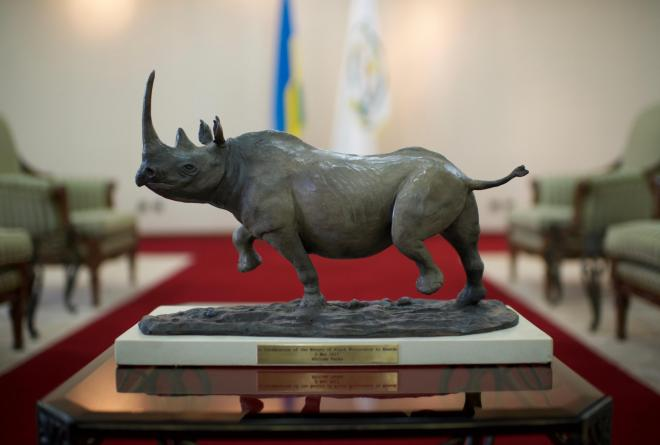 This particular rhino was hand-delivered to Rwandan President Paul Kagame by African Parks to thank him for restoring this endangered species and securing a future for them in Akagera National Park. May 2nd 2017 will be marked as a day of homecoming, and a day of hope.