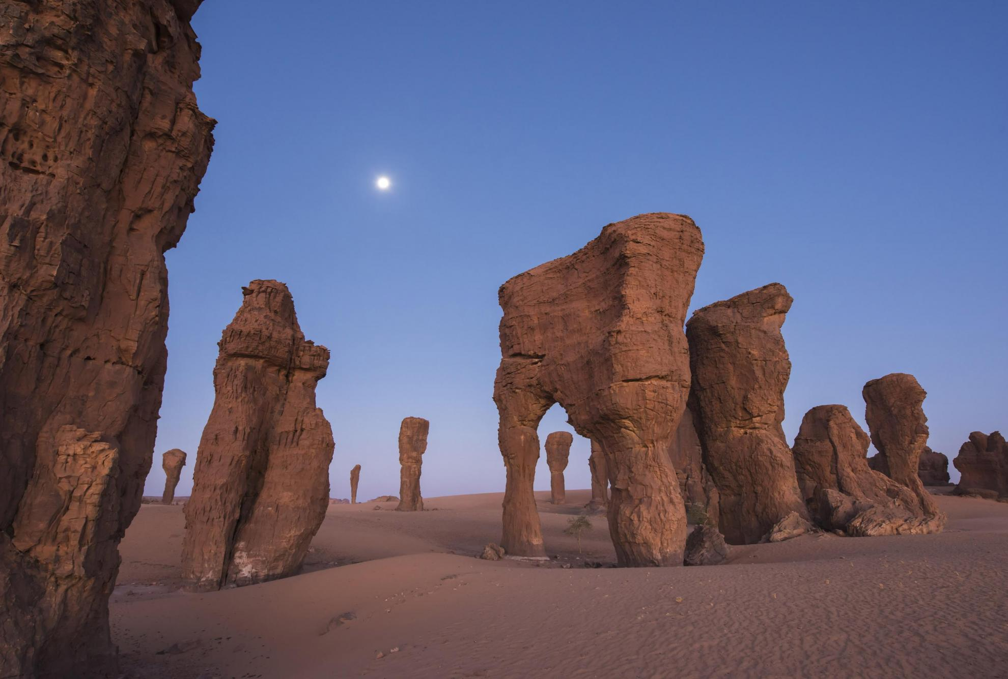 Ennedi in Chad | African Parks